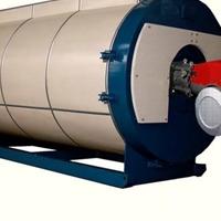 国内著名制造企业全身动化控制导热油炉