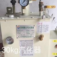 中邦LPG30kg电热式化气炉