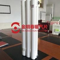 5025钢二柱暖气片-尺寸-定制-生产