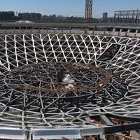 大型场馆6061氧化铝合金幕墙及穹顶结构