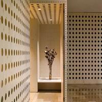异形冲孔铝板-造型艺术铝单板定制