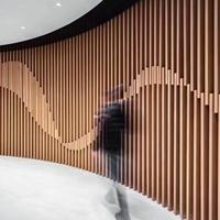 游客接待中心不规则铝方通背景墙