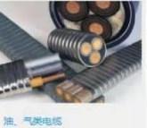 潜油电缆引接电缆