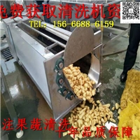 洗濯机价钱 毛辊蔬菜洗濯机