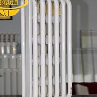 电厂专用钢制弧型散热器