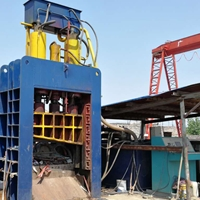 500噸液壓廢鋼龍門剪切機