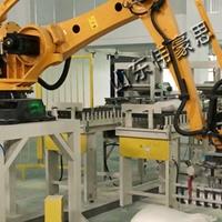 智能自动搬运机器人 全自动袋装搬运机械手