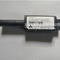 蓝姆泰克火焰传感器KLC2002 667R0810-1