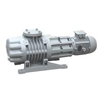 真空熱處理爐專用羅茨真空泵