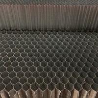 廠家直銷黑色六角蜂窩網 鋁蜂窩網