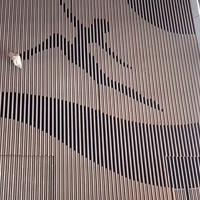弧形木纹铝方通吊顶_学校体育馆造型方通