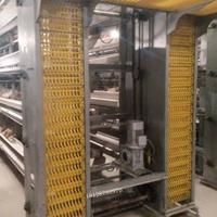 養殖機械廠家 收蛋機器