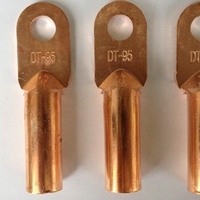 铜线鼻子 堵油式铜接头 接线端子DT-240