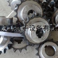 廠家出售傳動用精密大滾子鏈輪 傳動式齒輪