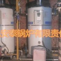 20万大卡低氮热水锅炉采暖取暖2000平米