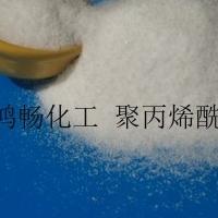 溧陽陰離子聚丙烯酰胺用于夏季湖泊除藻
