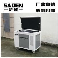 10kw液化气发电机一体萨登DS10JQD型号